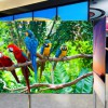 CES 2012 Roundup of our Hottest Exhibitions