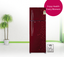 Cooling, Saving, and Total Comfort with LG Double Door Refrigerator (LG GL-D292 RPJLWG)