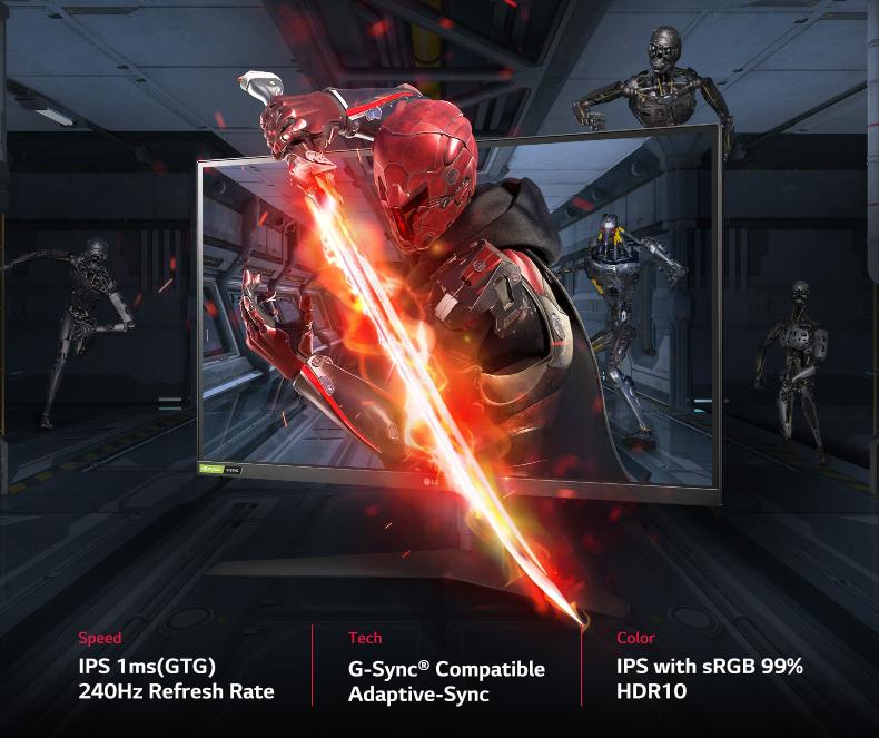 LG Ultragear Full HD IPS Gaming Monitor